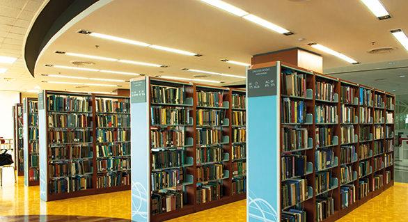 Bibliotekens handledande roll