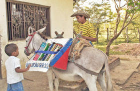 UTBLICK – Åsnebibliotek i Zimbabwe